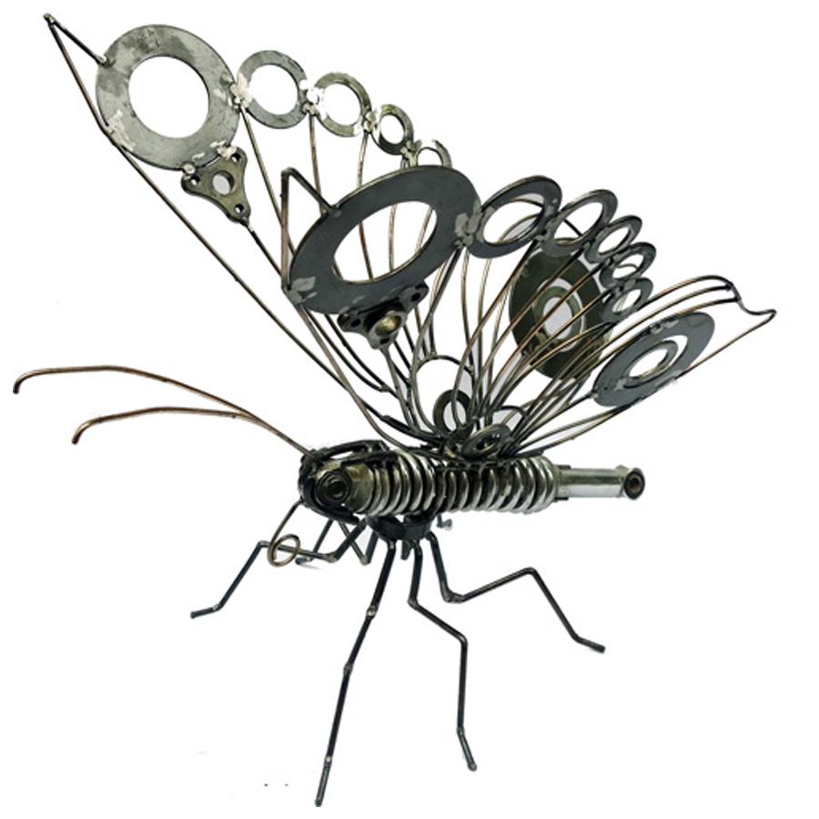 BAHRAM-ASHOFTEH-butterfly_A